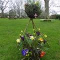 Spring flowers Kokedama style