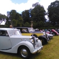 Classic cars at Bicton