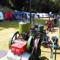 Steam engines at Bicton