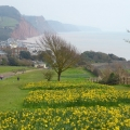 Sidmouth East Devon