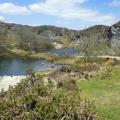 Haytor Quarry, Dartmoor, Devon