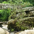 Clapper bridge on Dartmoor, Devon