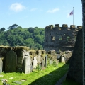 Dartmouth Castle, English Heritage