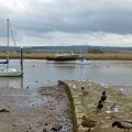 Topsham on the Exe Estuary