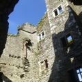 Seymour history within Berry Pomeroy Castle