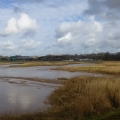 Topsham marshes, Exe Estuary trail