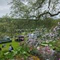 Garden Festival Toby Buckland 2021