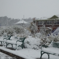 Snow in Dawlish Warren