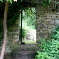 Bradley gardens, National Trust, Devon