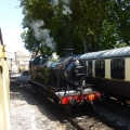 Dartmouth Steam Railway engine