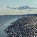 Beach galore