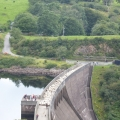 Sheep crossing Meldon Dam